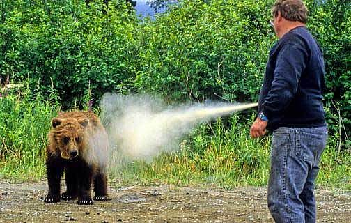 pepper spray vs bear spray