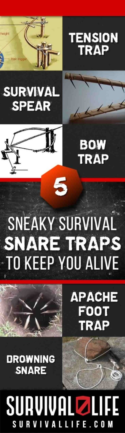 Sneaky Survival Snare Traps to Keep You Alive