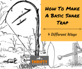 How To Make a Basic Snare Trap: 4 Different Ways