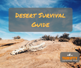 Desert Survival Guide