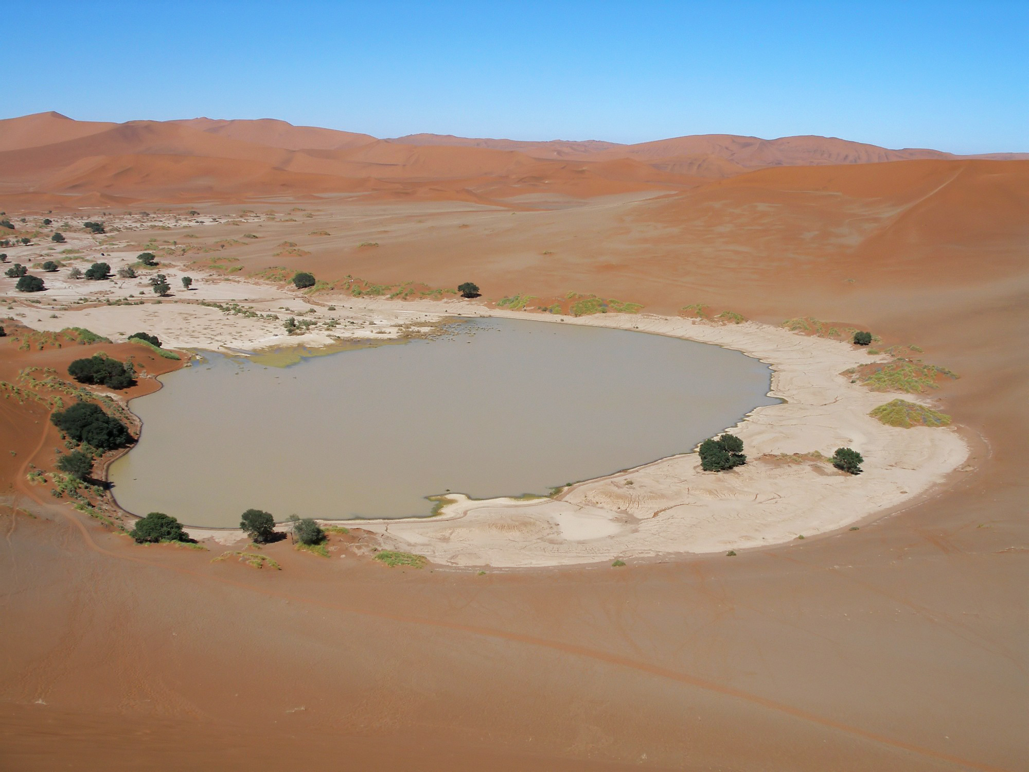 Water in a Desert