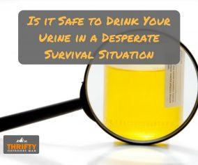 Is it Safe to Drink Your Urine in a Desperate Survival Situation