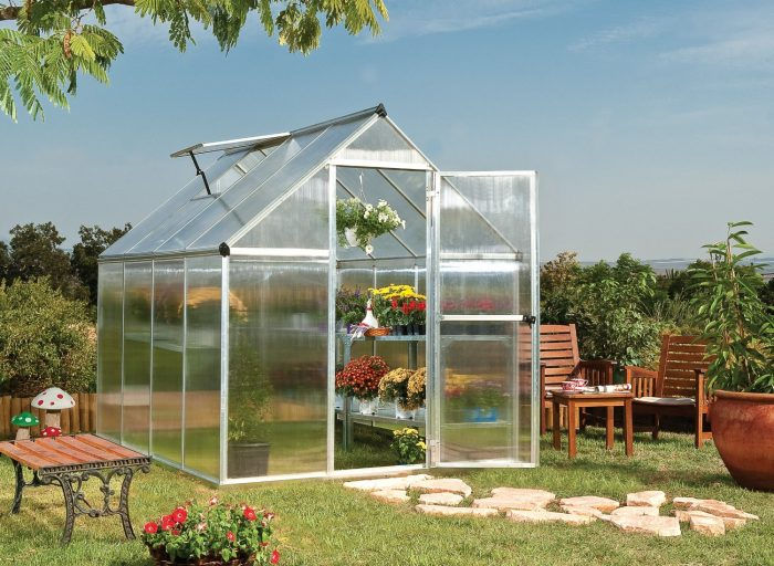 Your Ultimate Guide to Backyard Greenhouse Kits