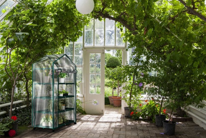 small greenhouse kits