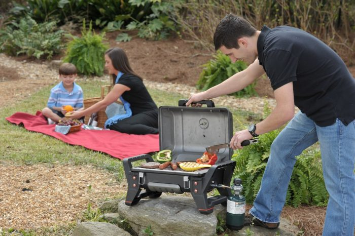 5 Best Portable Gas Grills
