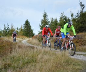 Best Rated Mountain Bikes