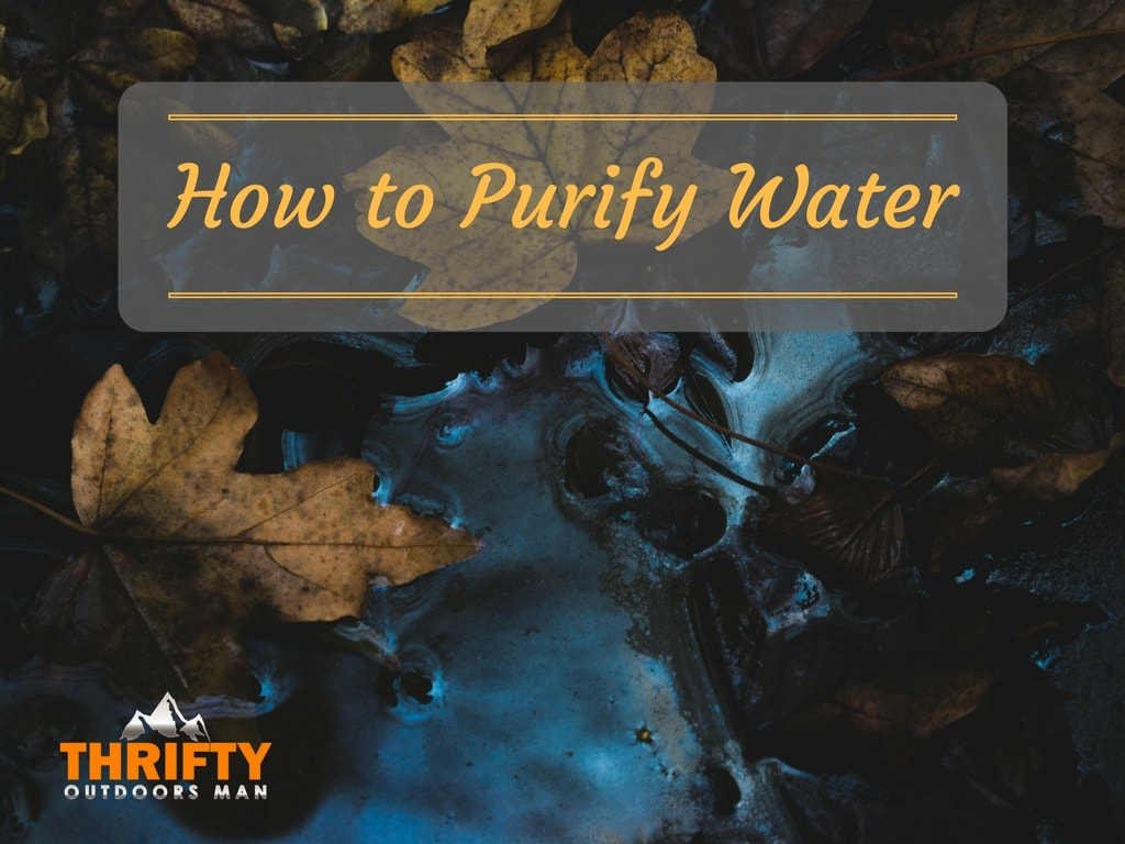 Survival Skills: How to Purify Water