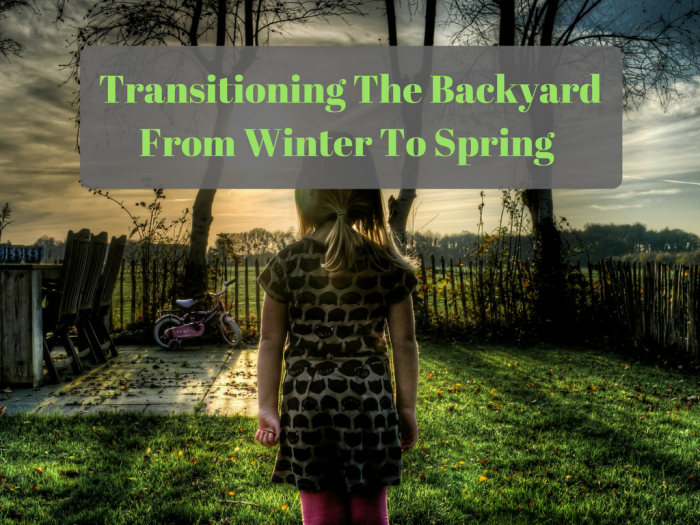 Transitioning the Backyard from Winter to Spring in an Environmentally Friendly Way