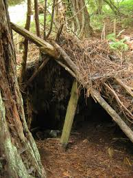 survival shelter rule of 3