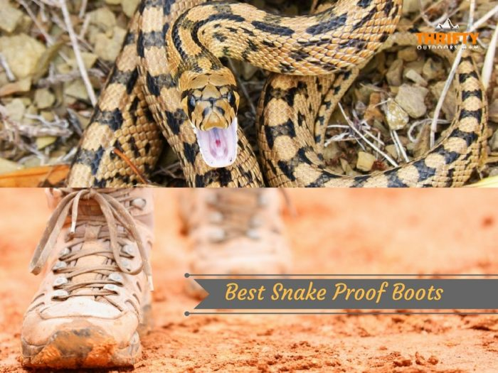 Best Snake Proof Boots and why you need them