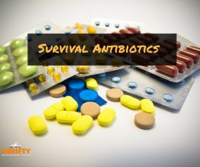 Survival Antibiotics