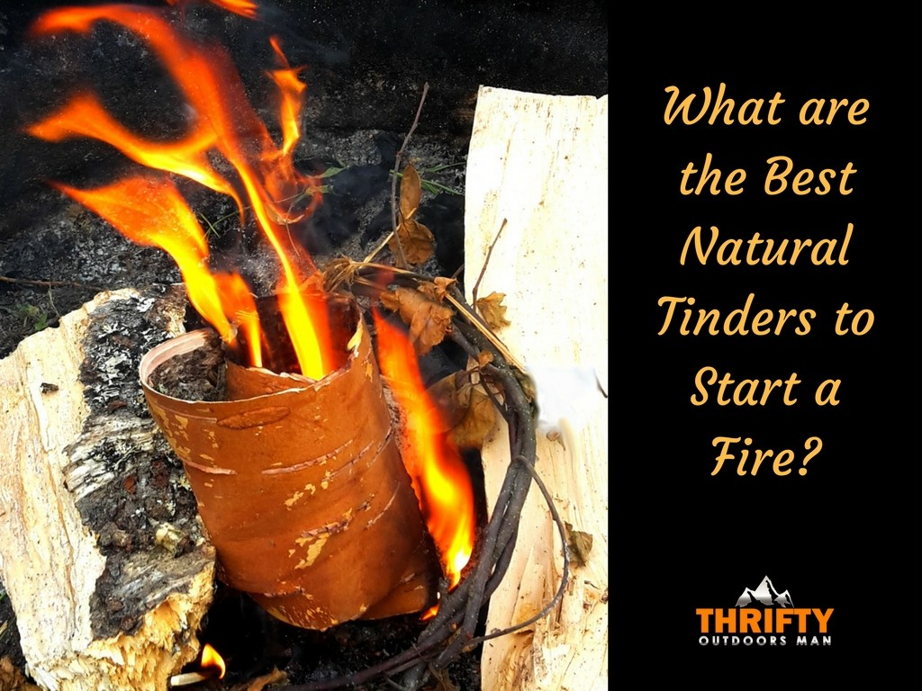 What are the Best Natural Tinders to Start a Fire
