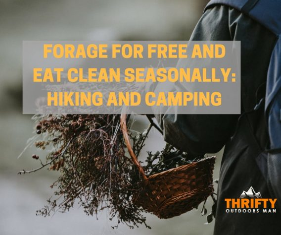 FORAGE FOR FREE AND EAT CLEAN SEASONALLY_ HIKING AND CAMPING